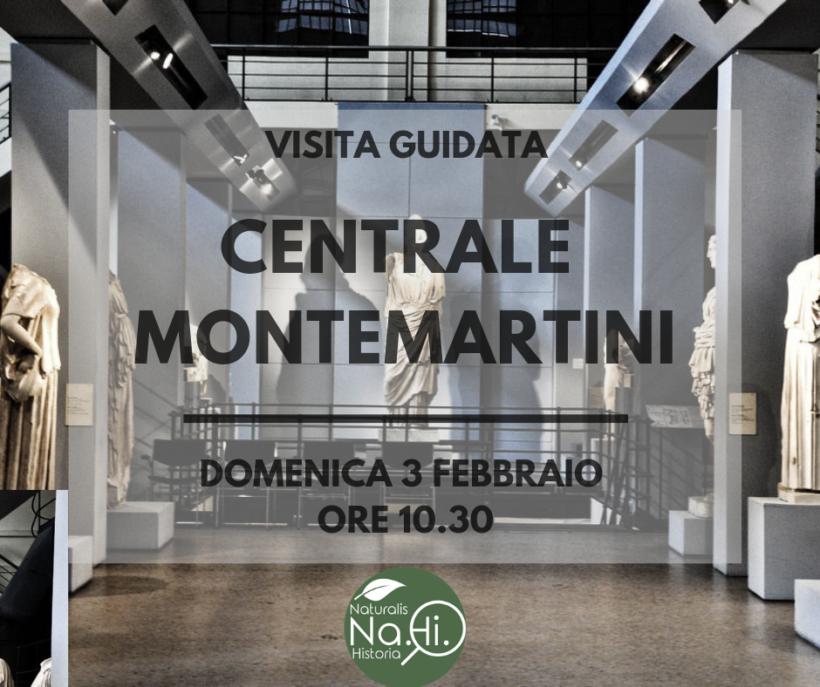Centrale Montemartini visita guidata