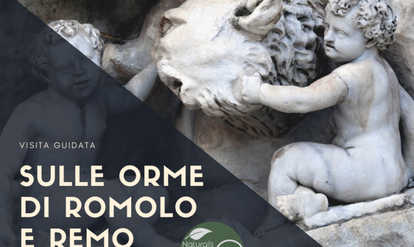 Sulle orme di Romolo e Remo